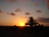 Une maison de la médina en pleine campagne d'Akermoud Dsc05611