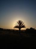 Une maison de la médina en pleine campagne d'Akermoud Dsc08010