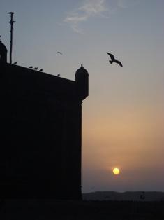 Les couchers sublimes à l'horizon d'Essaouira Dsc09514