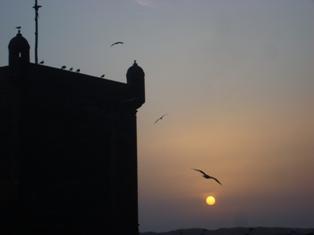 Les couchers sublimes à l'horizon d'Essaouira Dsc09525