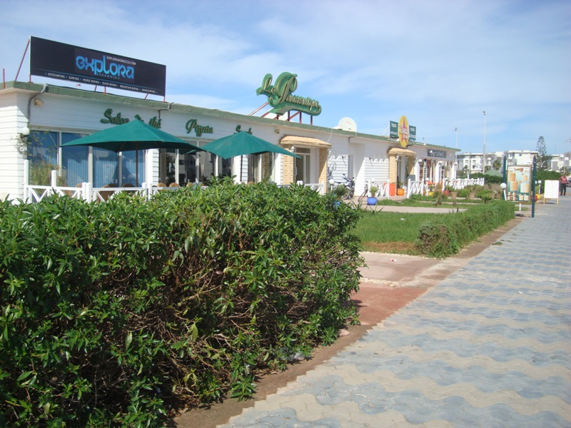 La cornihe d'Essaouira Dsc09714