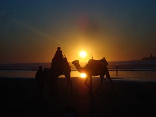 La cornihe d'Essaouira Dsc09914