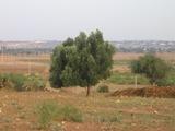 Une maison de la médina en pleine campagne d'Akermoud Essaou15