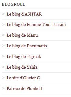 """""""Rédacteurs Invités"""" Blogro10"""