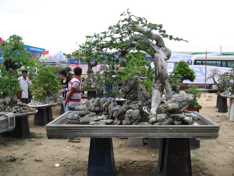 Continuing the Vietnam 'thread'... Tradef22
