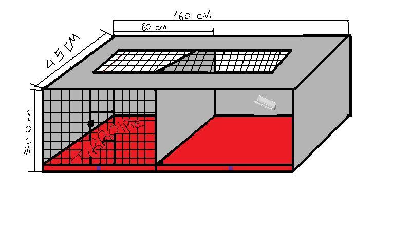 projet volière interieure  Voliar10