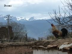 La Chine sac au dos (18) Voyage au Pays du Kham (康巴), Episode 2 : De Shangerila (香格里拉) à Litang (理塘) via Xiangcheng (乡城) Shange13
