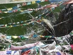 La Chine sac au dos (16) En Direct de Yushu (玉树) au Qinghai (青海) Wengch11