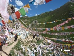 La Chine sac au dos (16) En Direct de Yushu (玉树) au Qinghai (青海) Wengch13
