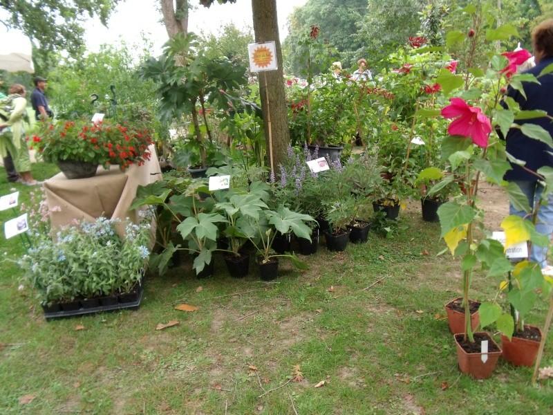 La Fete des Plantes de Nantes aujourd'hui Dscf0548