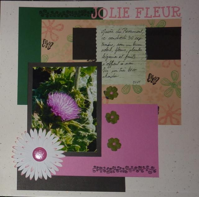 Galerie de Sophie 24 - Page 2 P1120519