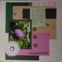 Galerie de Sophie 24 - Page 3 P1120518