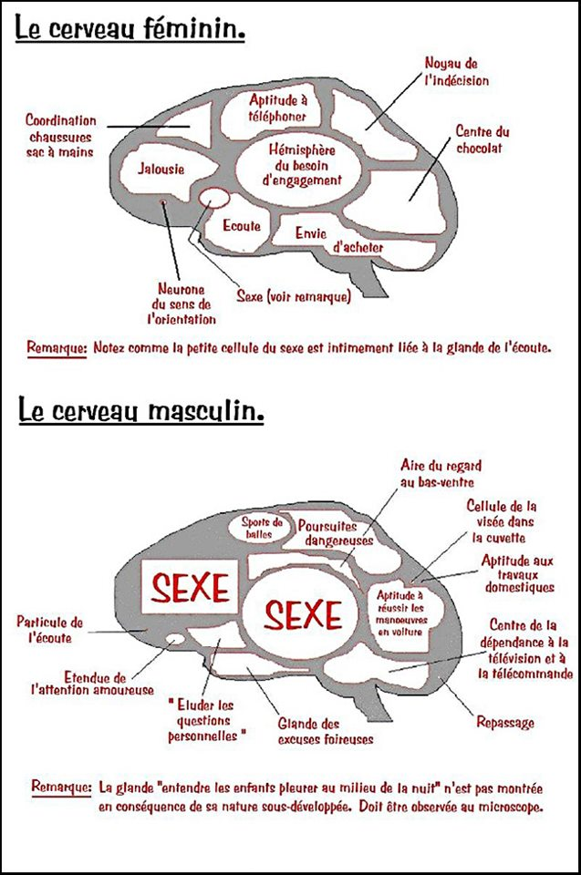 [topic] l'humour du FRC. - Page 14 29516310
