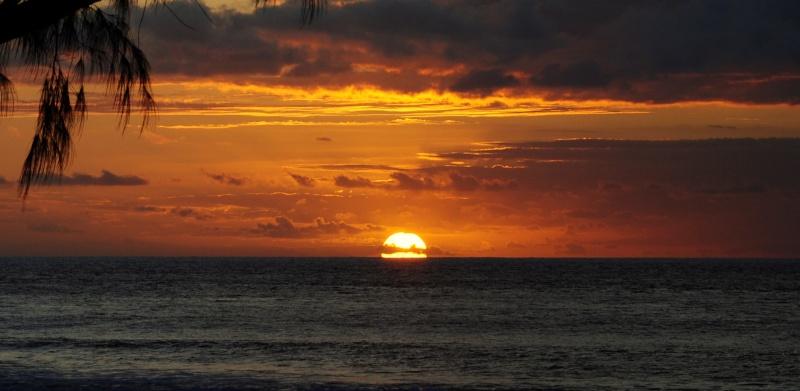 Ile de la Réunion.. Dsc_0119