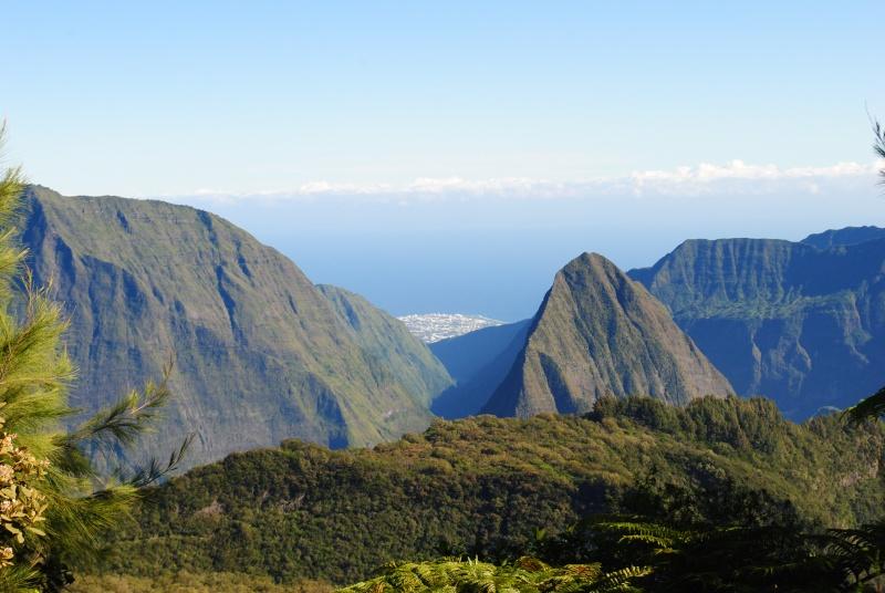Ile de la Réunion.. Dsc_0310
