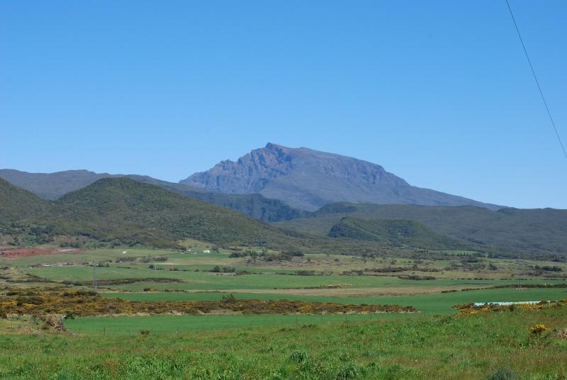 Ile de la Réunion.. Dsc_0313