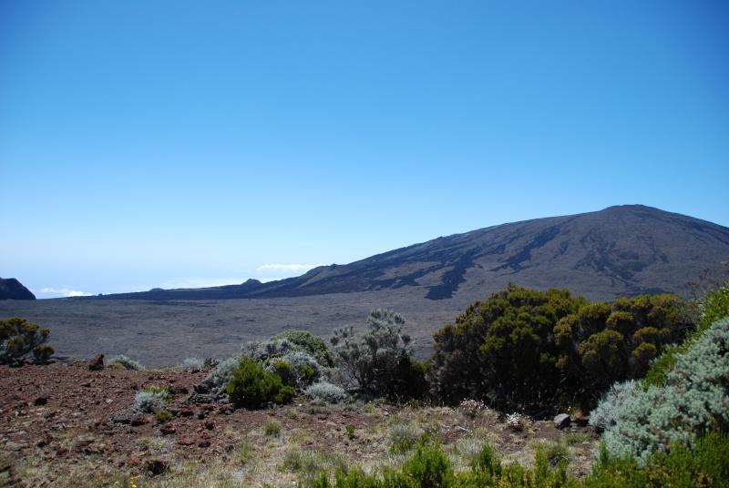 Ile de la Réunion.. Dsc_0315