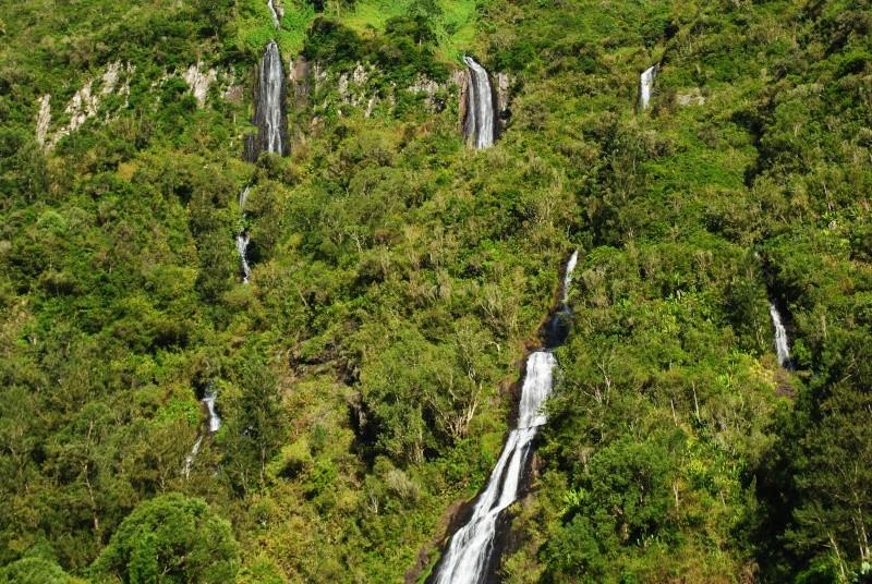 Ile de la Réunion.. Dsc_0710