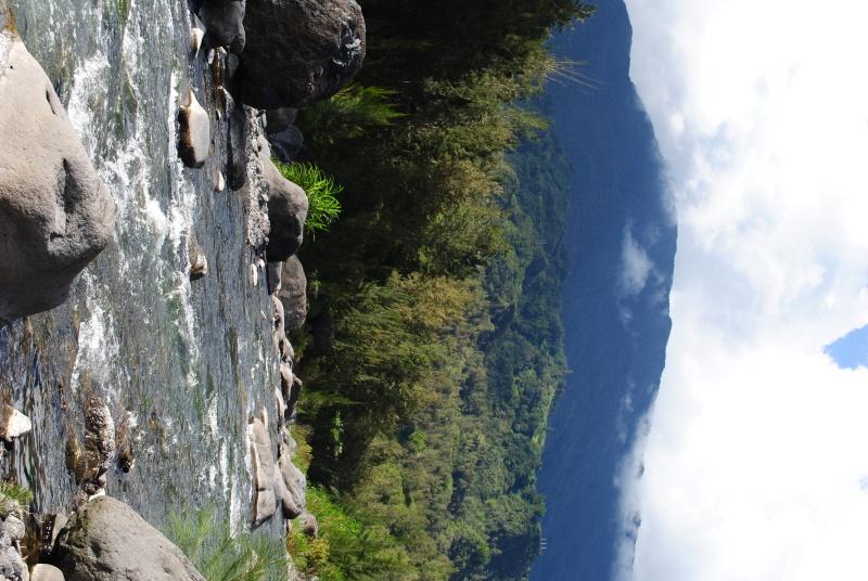 Ile de la Réunion.. Dsc_0711