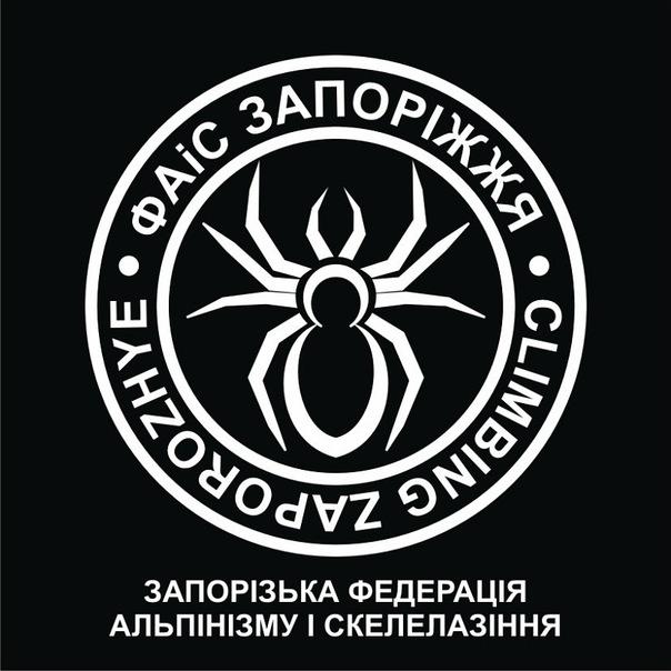Эмблема федерации для футболки X_ee3810