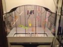 nouvelle cage !!! Img_1210