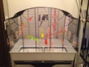 nouvelle cage !!! Img_1211