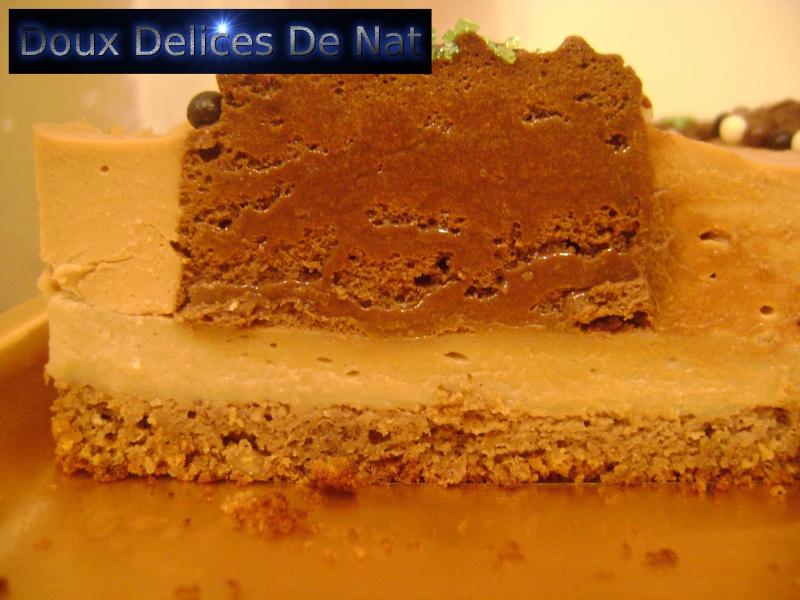 Gâteau l'écureuil : Dsc03114