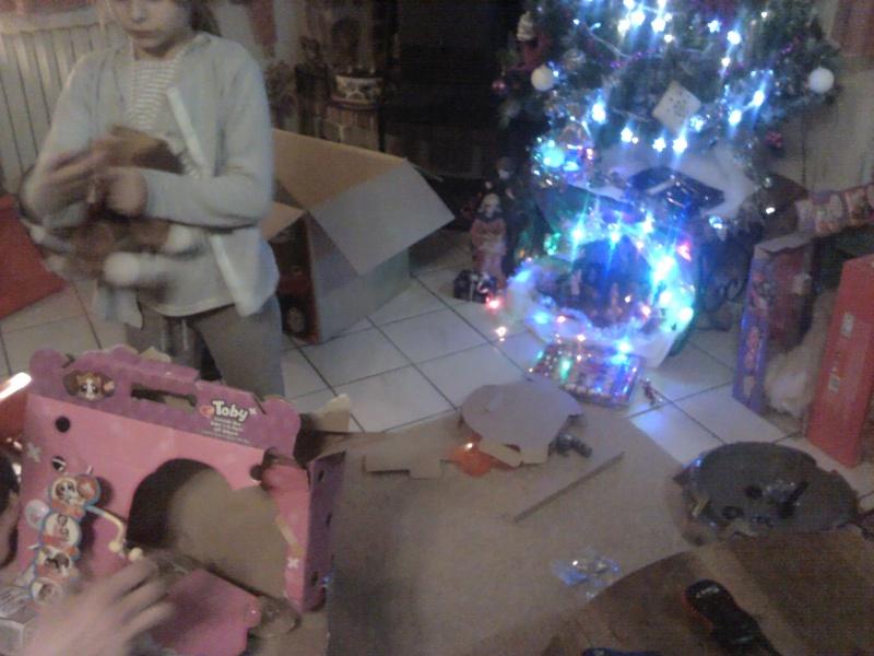 C'est Noël ! (et autres fêtes de fin d'année) 2011-135