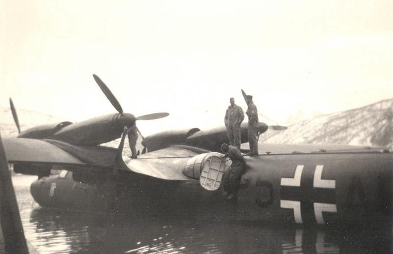 Narvik 1940 Dornie10