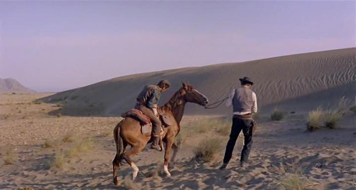 Le désert. Vlcs2418