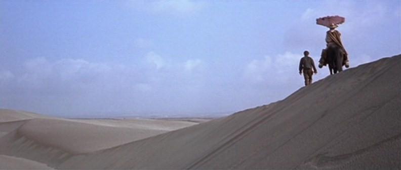 Le désert. Vlcs2419