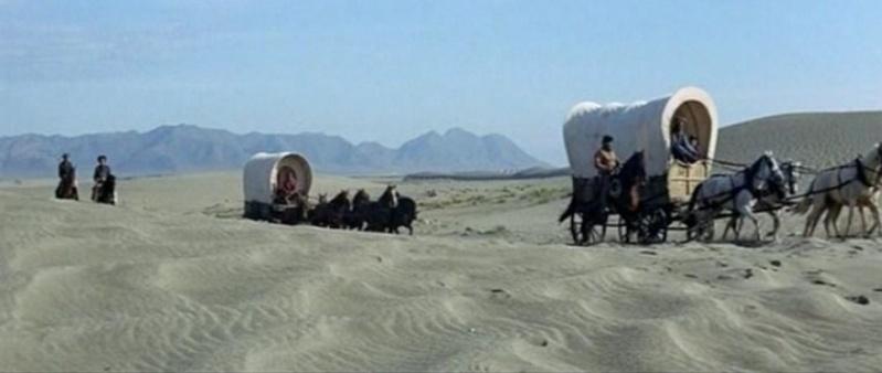 Le désert. Vlcs2421