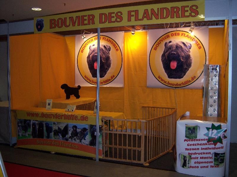 Bouvierhilfe Präsentation 2010 Kieler Tiertage November 2010 Aufbau11