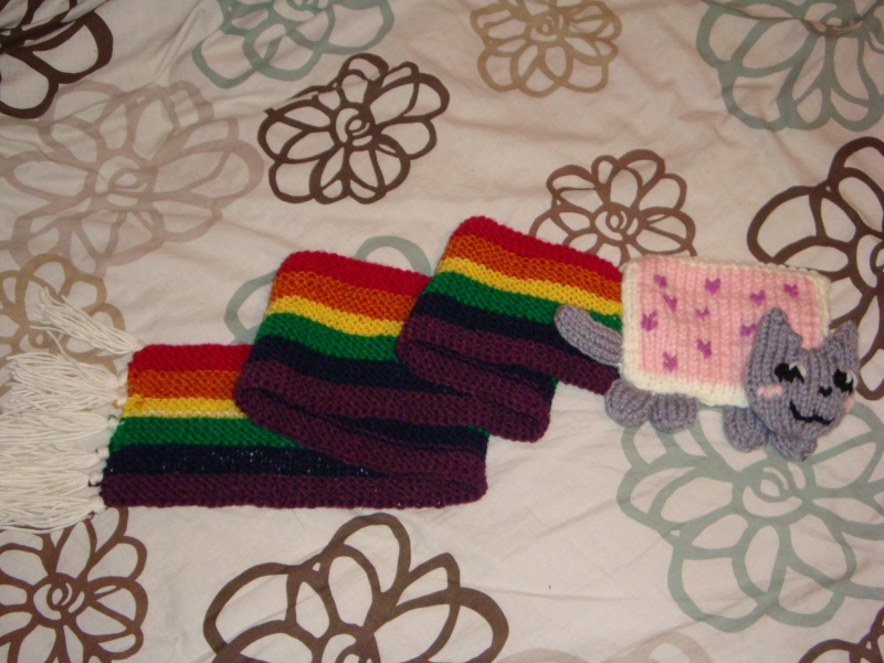 [Commis] Nyan Cat scarves (reopened~!) Dsc01210