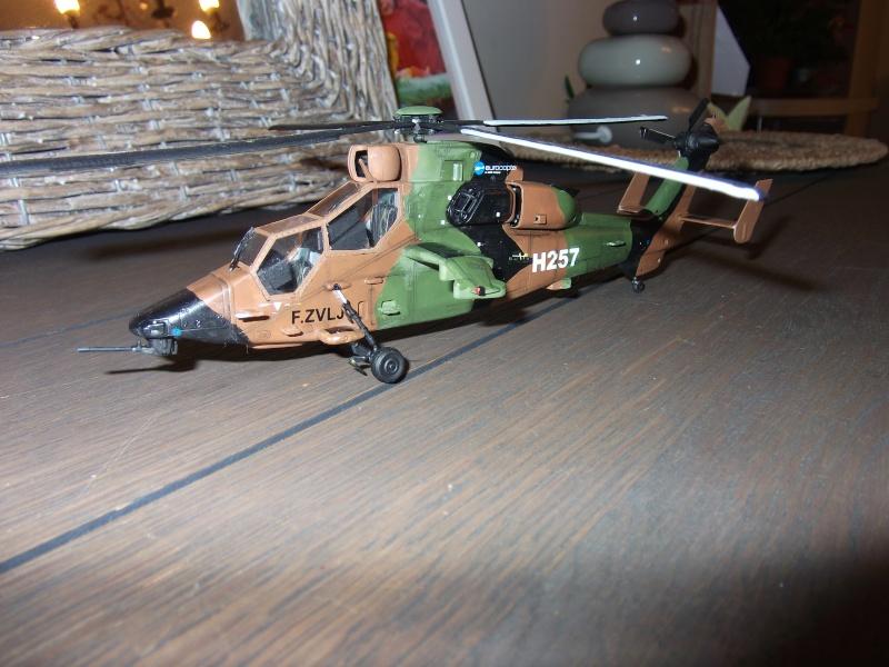 Tigre 1/72 Hobby Boss Dscf0112
