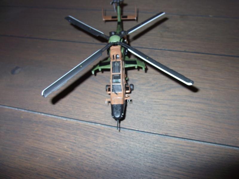 Tigre 1/72 Hobby Boss Dscf0114