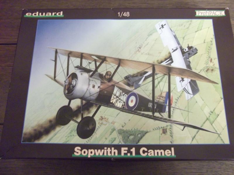 Sopwith F.1 Camel Eduard 1/48° Dscf0157