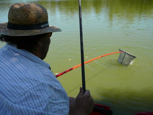 Festival de pêche sur le plan d'eau de Chuzelles (38) les 16 et 17 juin 2012 319bf111