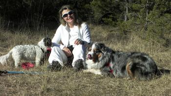 Dogs Harmony Éducateur Canin Comportementaliste Comps_10