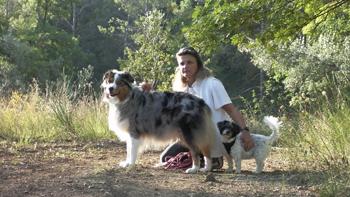 Dogs Harmony Éducateur Canin Comportementaliste Sany0015