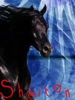 Peluche a ses secret & Co [Ouvert] [1/3] - Page 3 Sheita10