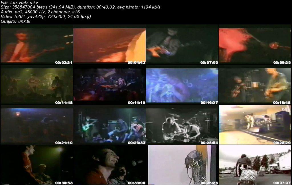 LES RATS - Live, Reportage & Clips Les_ra10
