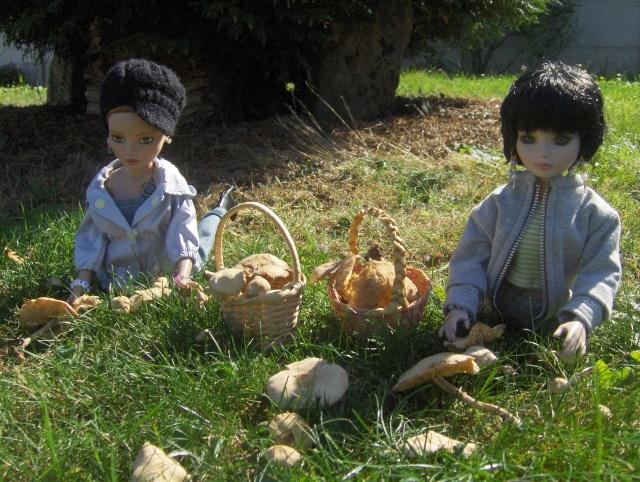 """10 - THEME PHOTO DU MOIS: Septembre 2011 """"c'est la rentrée, bientôt l'automne"""" - Page 4 Hpim9912"""