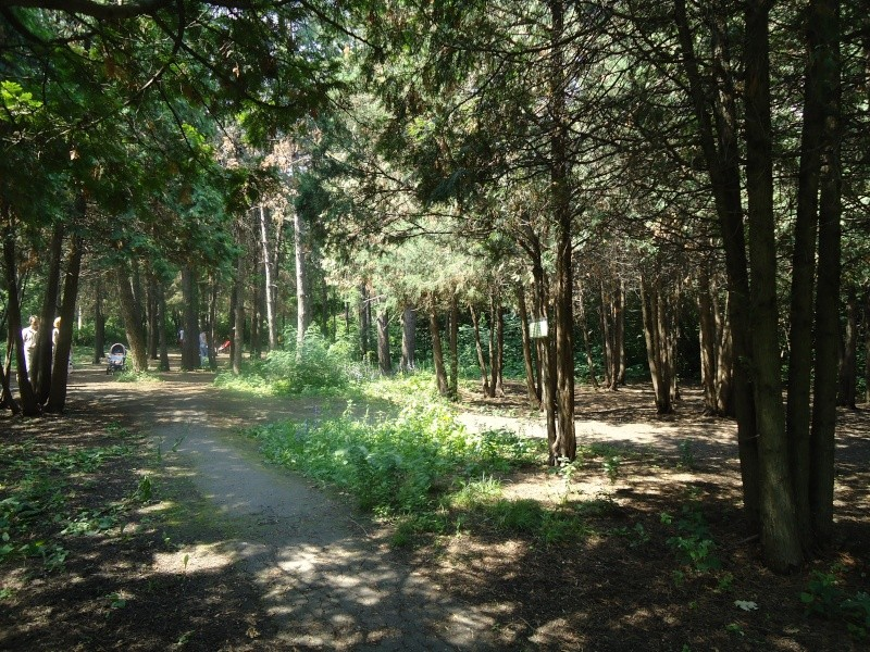 Самара: Ботанический Сад Dsc04822