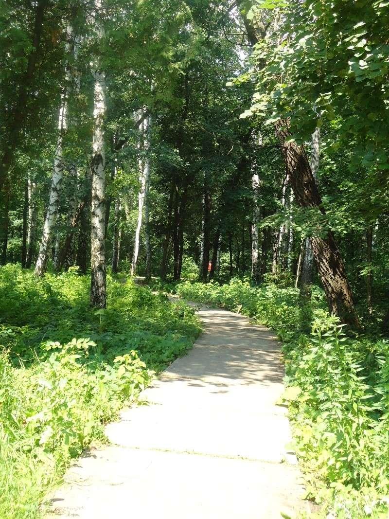 Самара: Ботанический Сад Dsc04828