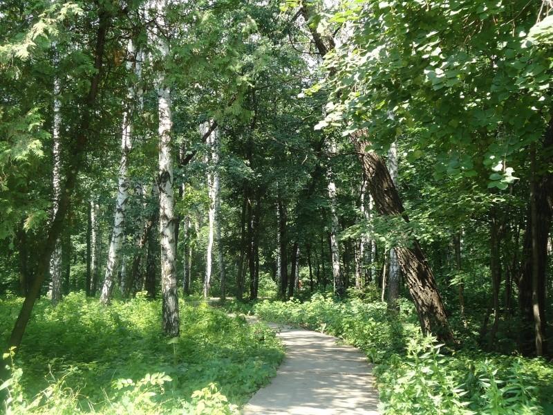 Самара: Ботанический Сад Dsc04829