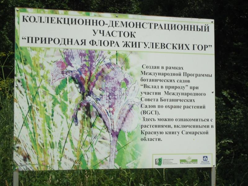 Самара: Ботанический Сад Dsc04836