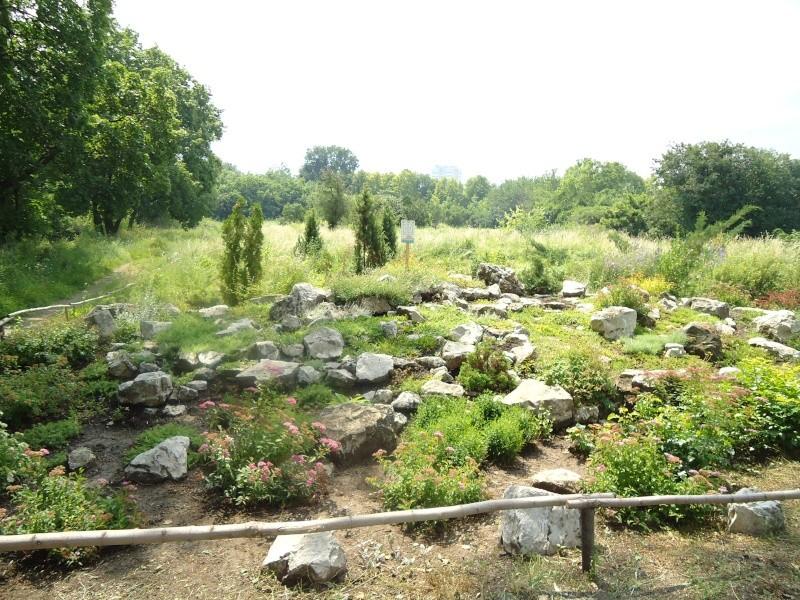 Самара: Ботанический Сад Dsc04838
