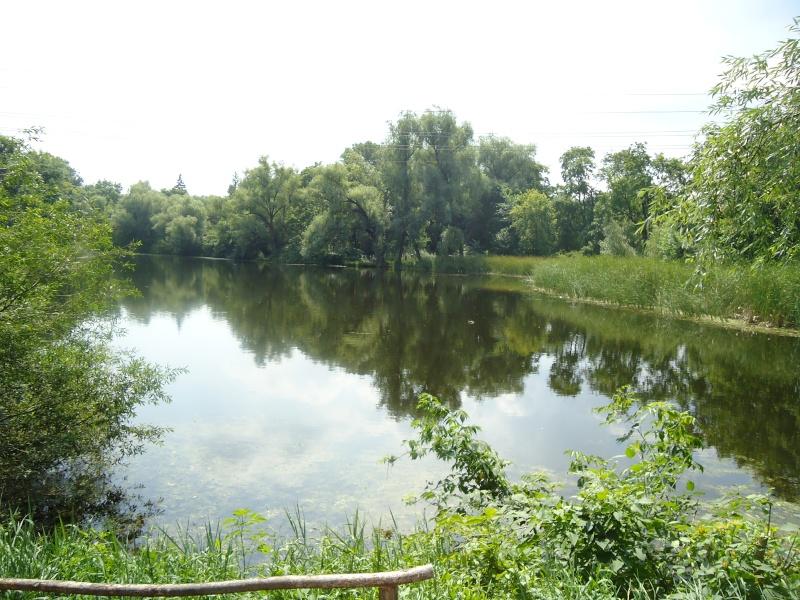 Самара: Ботанический Сад Dsc04841
