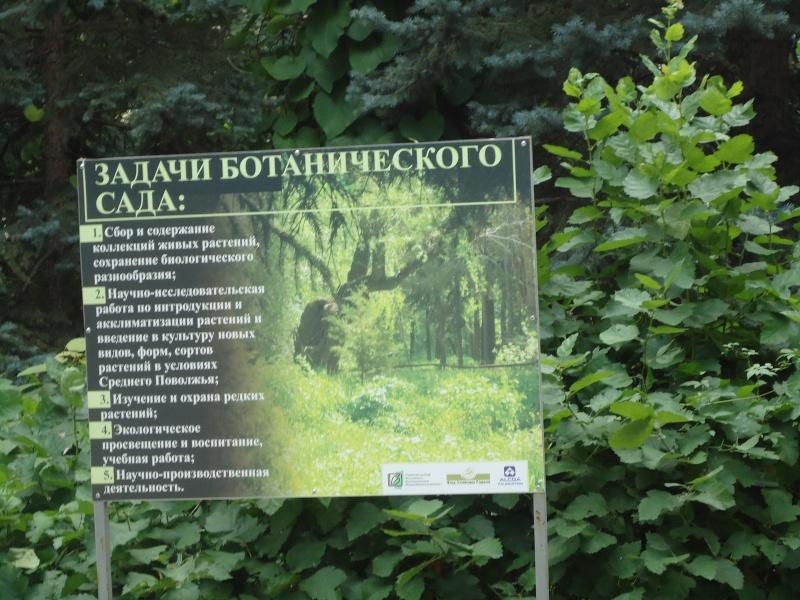 Самара: Ботанический Сад - Страница 2 Dsc04915